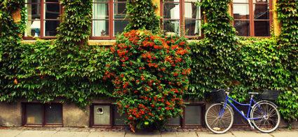 Itinerario di 3 o 4 giorni a Copenaghen